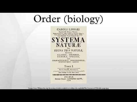 Order (biology)