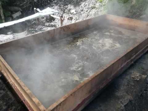 Making Organic Sugar / Producir azúcar orgánica.