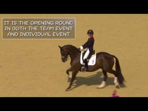 Dressage at Rio 2016 Olympic Games : Quick Guide