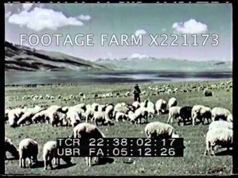 Peru, People of the Andes 221173-03   Footage Farm