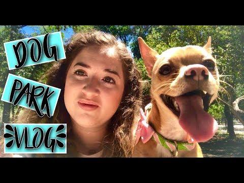 Doggy Park Adventure w/ Krispy Kreme | VLOG