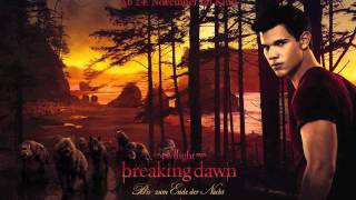 [Breaking Dawn Soundtrack] #8:The Belle Brigade - I Didn't Mean It