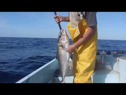Le film sur la pêche avec loui de fjunesom