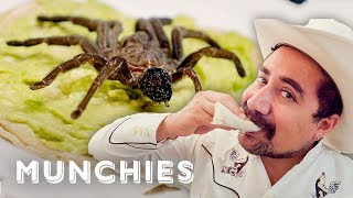 Snacking on Live Scorpions and Tarantula Tacos - All The Tacos