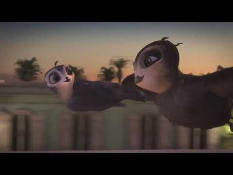 Птичий дозор мультфильм