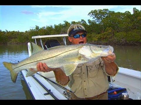 Snook Fishing Deep in the Florida Everglades with DOA Lures