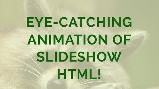 Eye-catching Animation of Slideshow HTML! thumbnail