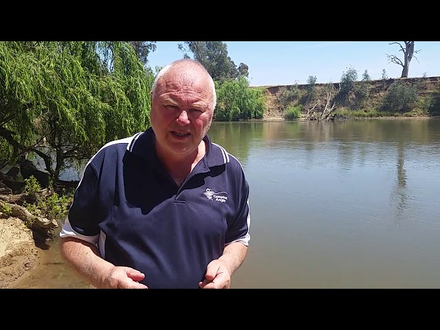 21 Nov 19 - Your local weekly fishing report brought to you by Compleat Angler Wagga