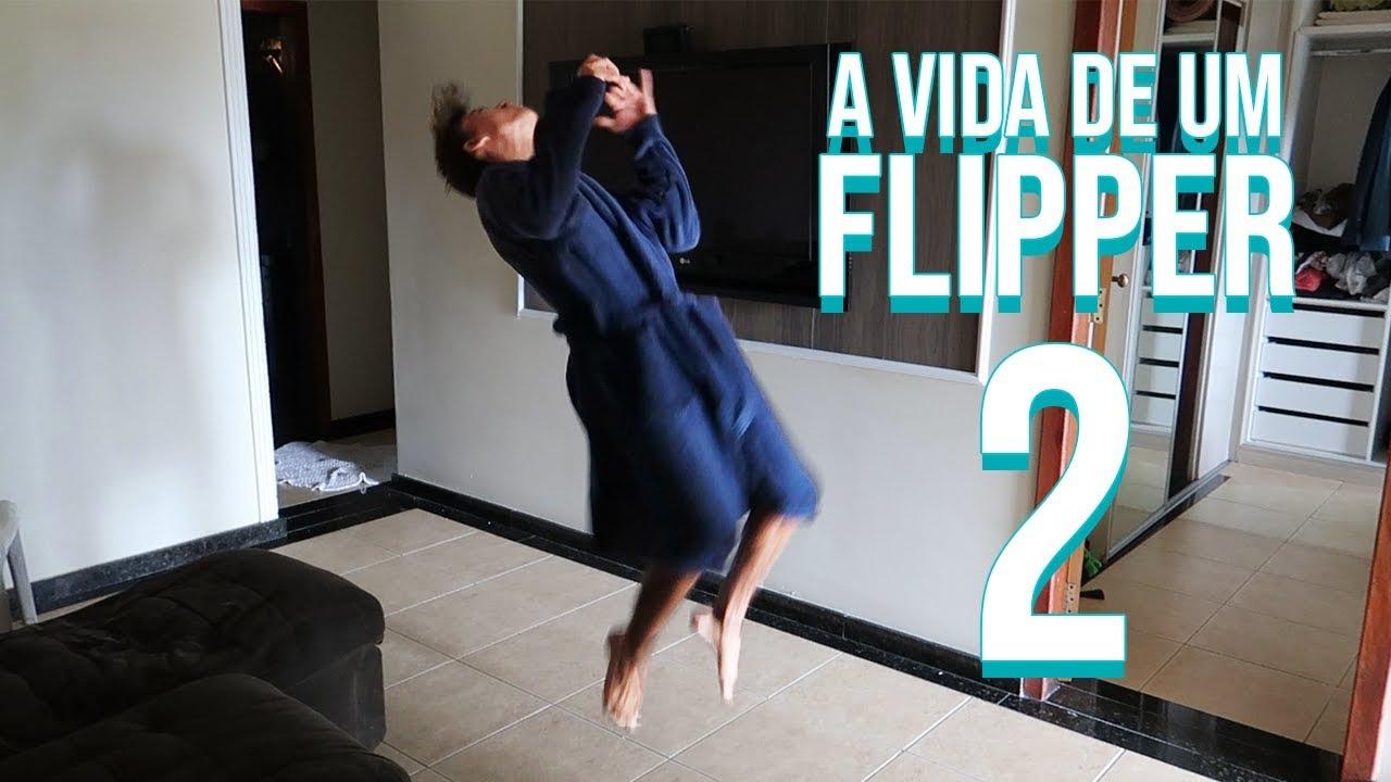 A VIDA DE UM FLIPPER 2