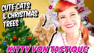 Cute Cats At Christmas - Real Cats vs Christmas Trees - Funny Cats Christmas Compilation 2018