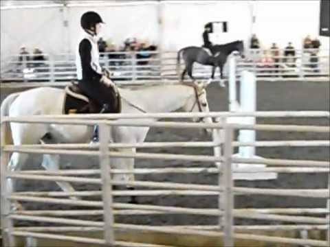 Virginia Horse Expo Day 2 Retired RaceHorse Training Project w/ Steuart Pittman