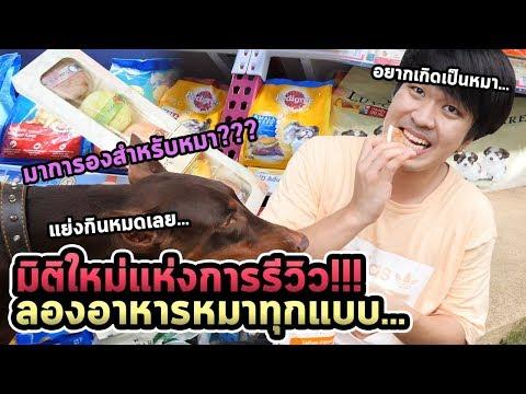 หนุ่มเกาหลีลองกินอาหารหมาทุกแบบในไทย...อร่อยจริง!!!