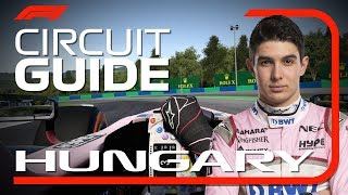 Esteban Ocon's Virtual Hot Lap of Hungary | Hungarian Grand Prix