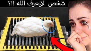 شخص يضع حيوانات حقيقية في جهاز الفرم !!  🇸🇦  اتحداك ماتبكي #بلال_رياكشن 🤬😭  !!