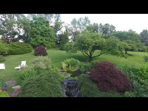 DJI 0042 - garden test