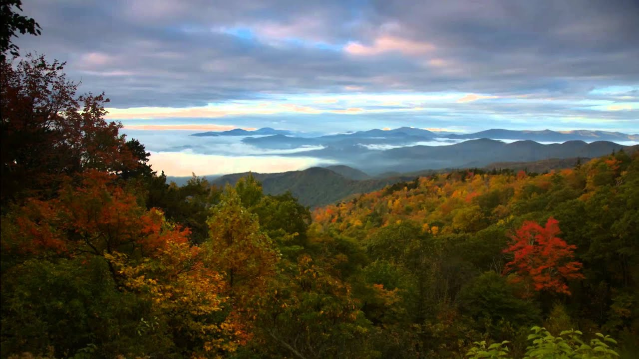 Free Fall Foliage Wallpaper Fall Color In Asheville N C And The Blue Ridge Parkway