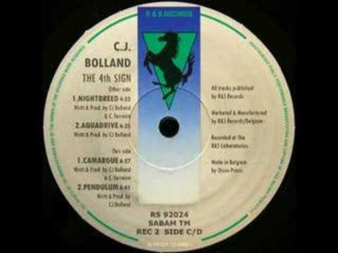 CJ Bolland  Camargue 1992