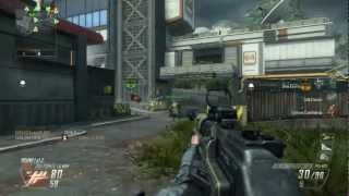 Call of Duty- Black Ops II Combat Axe Hail Mary by NJKen