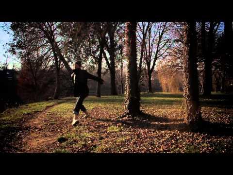 RawStory | Roots of Trees