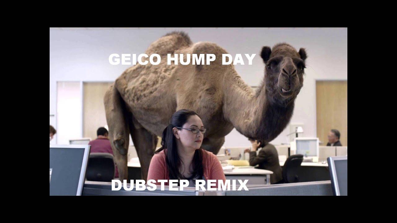 geico hump day script