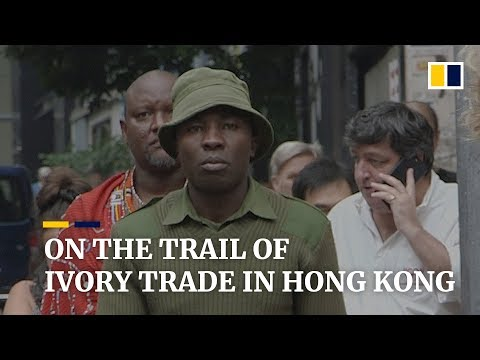 The two sides of Hong Kong's wildlife trade Mp3