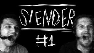 Thumbnail für das Slender: The Eight Pages Let's Play