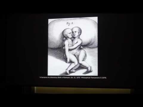 Zeynep Çelik Alexander: Architectures of Homogenous Empiricism