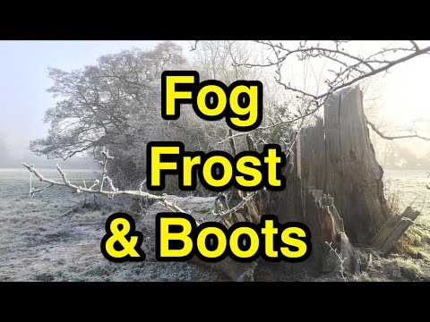 A Frosty Foggy Winter Morning