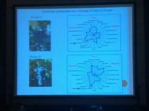Attilio Scienza - Lo studio del Passato per costruire il Futuro - Sicilia en Primeur 2013