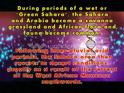 The term SUB-SAHARAH  makes no sense