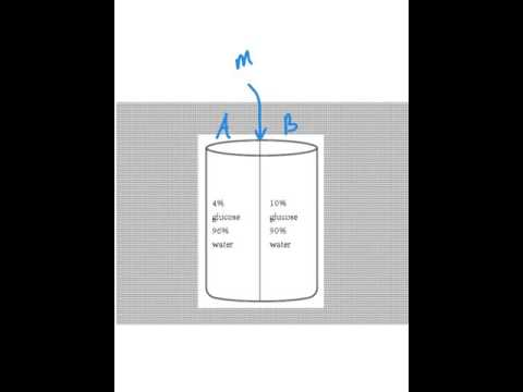 Passive transport diffusion osmosis review