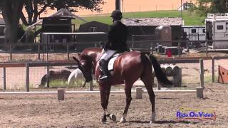 015D Whitney Tompkins on DVF Caliente Creek Preliminary Rider Dressage Shepherd Ranch June 2014