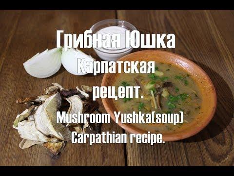 Грибная Юшка Карпатская