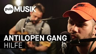 Antilopen Gang - Hilfe (PULS Live Session)