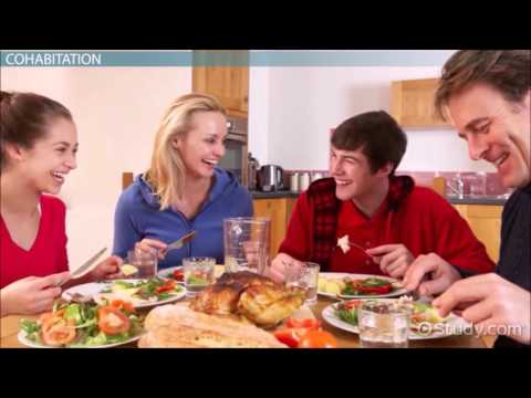 Traditional Vs. Nontraditional Families In The US