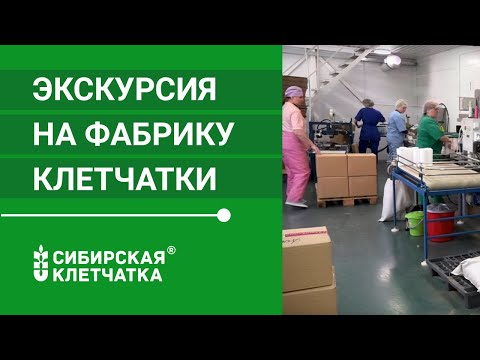 Сибирская клетчатка при похудении: как употреблять