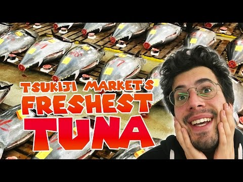 Tsukiji's Raw Tuna Auction!!