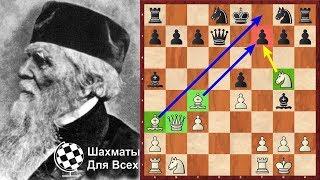 видео: Шахматы. Рождение Гамбита Эванса!