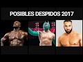 Posibles despidos 2017