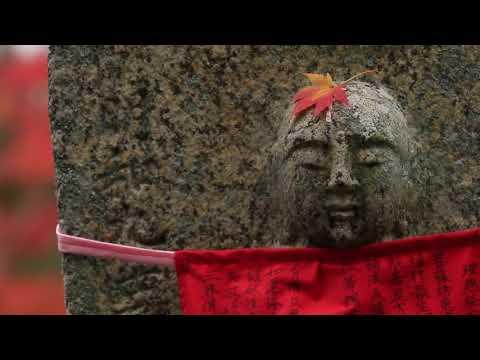 奈良、時の雫