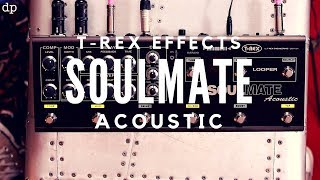 The ultimate Acoustic Guitar Pedal? T-Rex Effects SOULMATE Acoustic