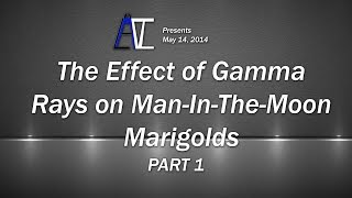 The Effect of Gamma Rays on Man-In-The-Moon Marigolds [Part 1]