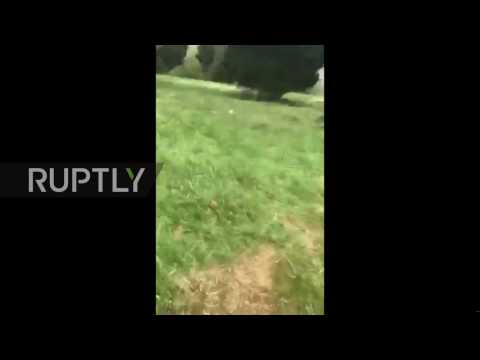 USA: 1 dead after Black Hawk helicopter crashes into golf course
