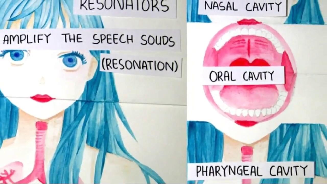 Speech Mechanism Anatomy Of Speech Production Youtube