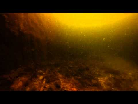 Diving in Donegal: Downings Pier 8/Aug/2015
