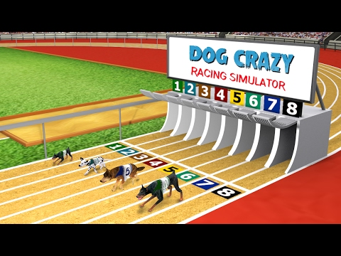 Dog Crazy Race Simulator - Simulation Games - Android Gameplay HD