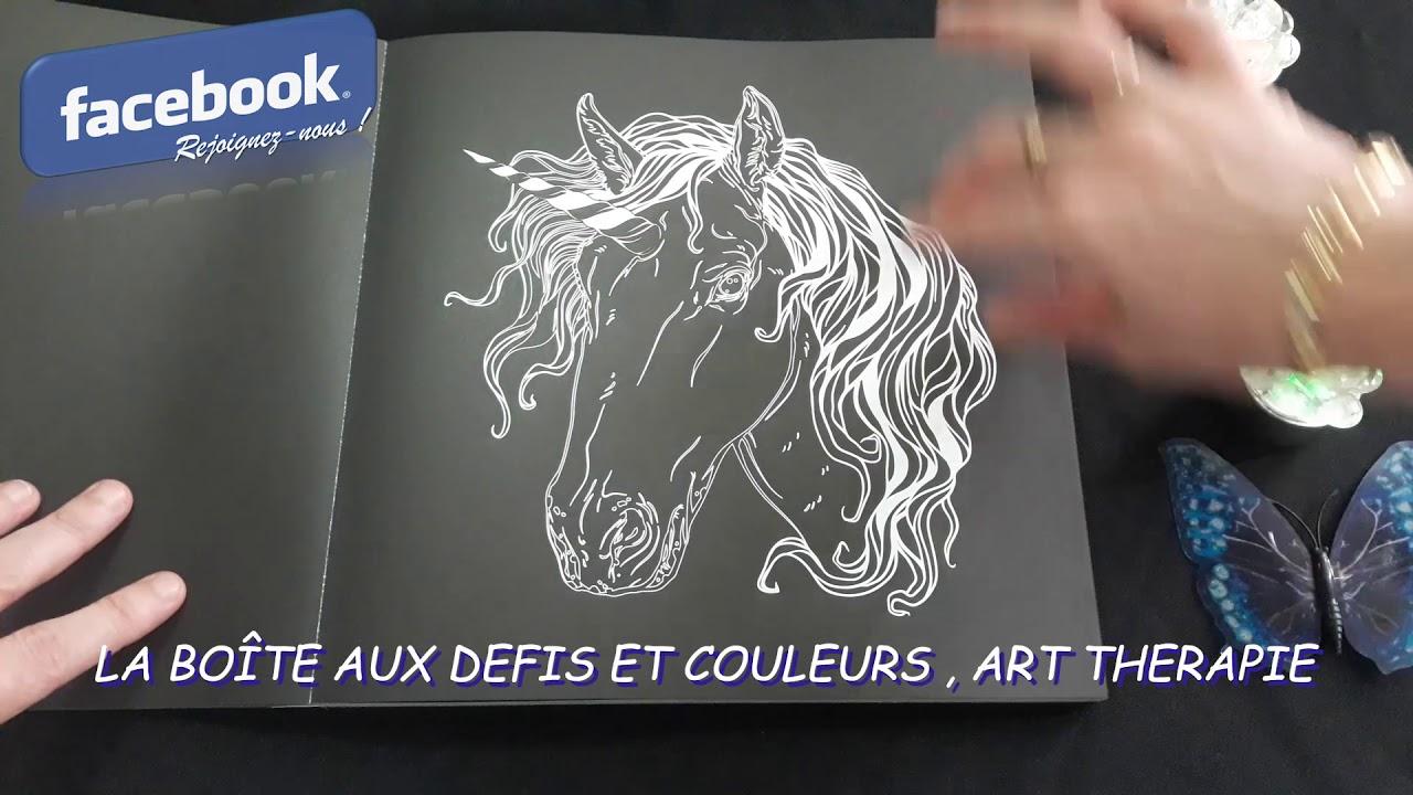 Coloriage Licorne Cultura.Licornes Des Editions Marabout Black Premium