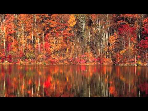 I Giorni - Ludovico Einaudi - Sheet music