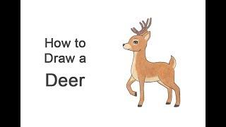 How to Draw a Deer (Cartoon)