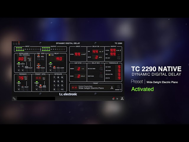 TC 2290 Dynamic Digital Delay Native Plug-In - Sound Example